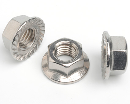 Stainless Steel Serrated Flanged Nuts